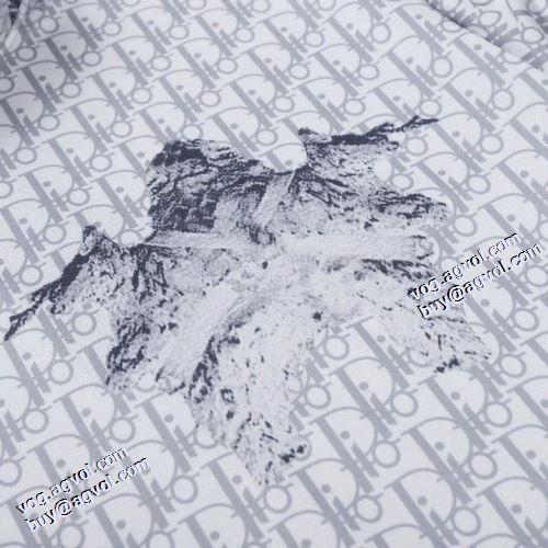 2021秋冬 ディオール DIOR プルオーバーパーカー ロゴパーカー 変わらない人気を誇る ディオールコピー ブランド ハイネックパーカー